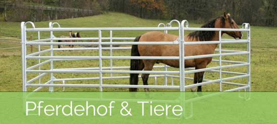 Weidepanel - Halten Sie Ihre  Pferde im Zaun